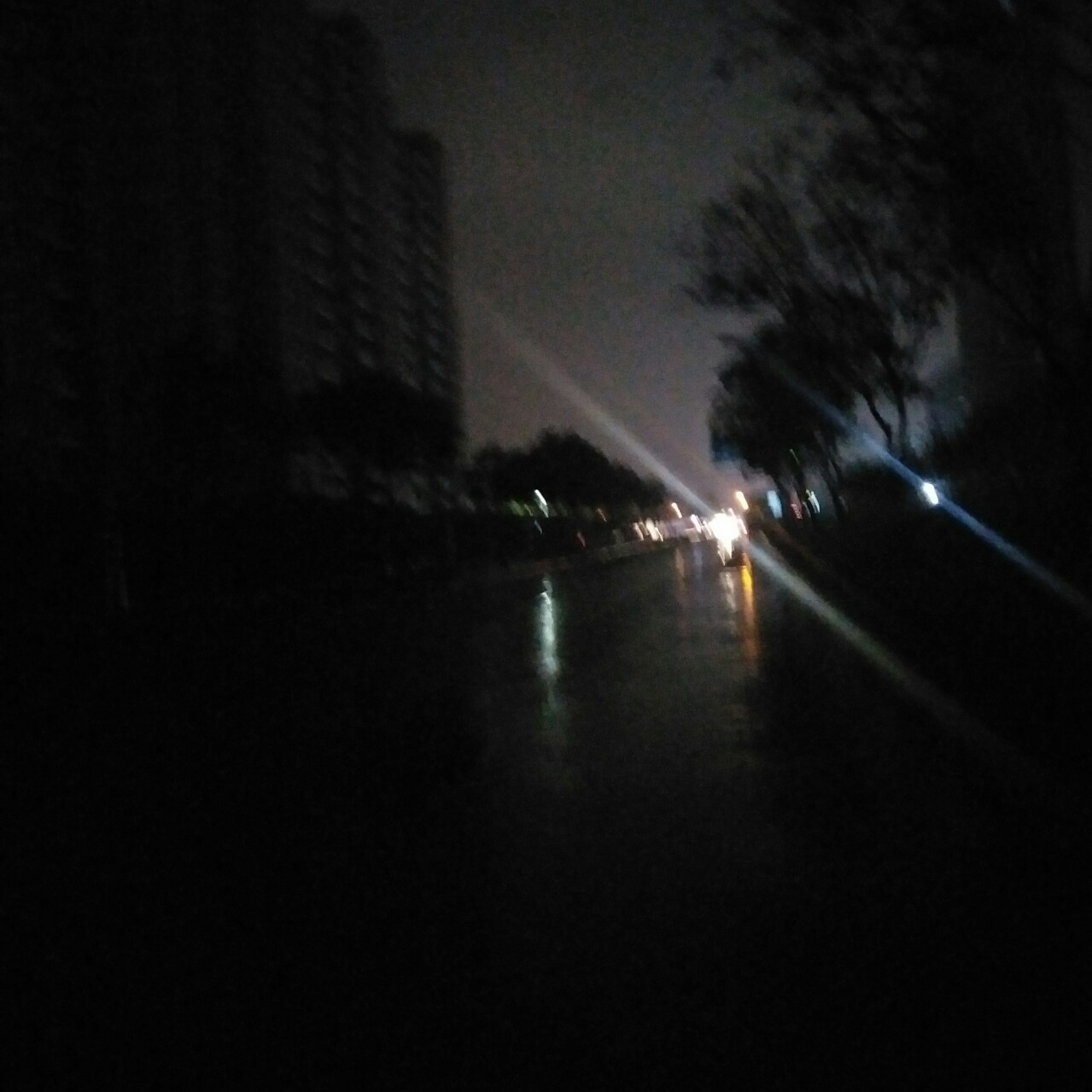 扬子江路又是黑灯抺火一夜,还能干点事吗?